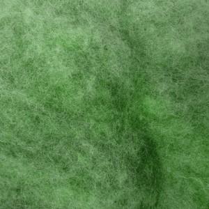 bizet vert clair 2