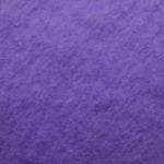 bizet n°12 violet